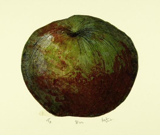 A Fruit,  2006  [  private collection Ra'anana, Israel]  Hand Colored Watercolor Etching and collagraph, Monoprint 20 x 21 1/4 in.
