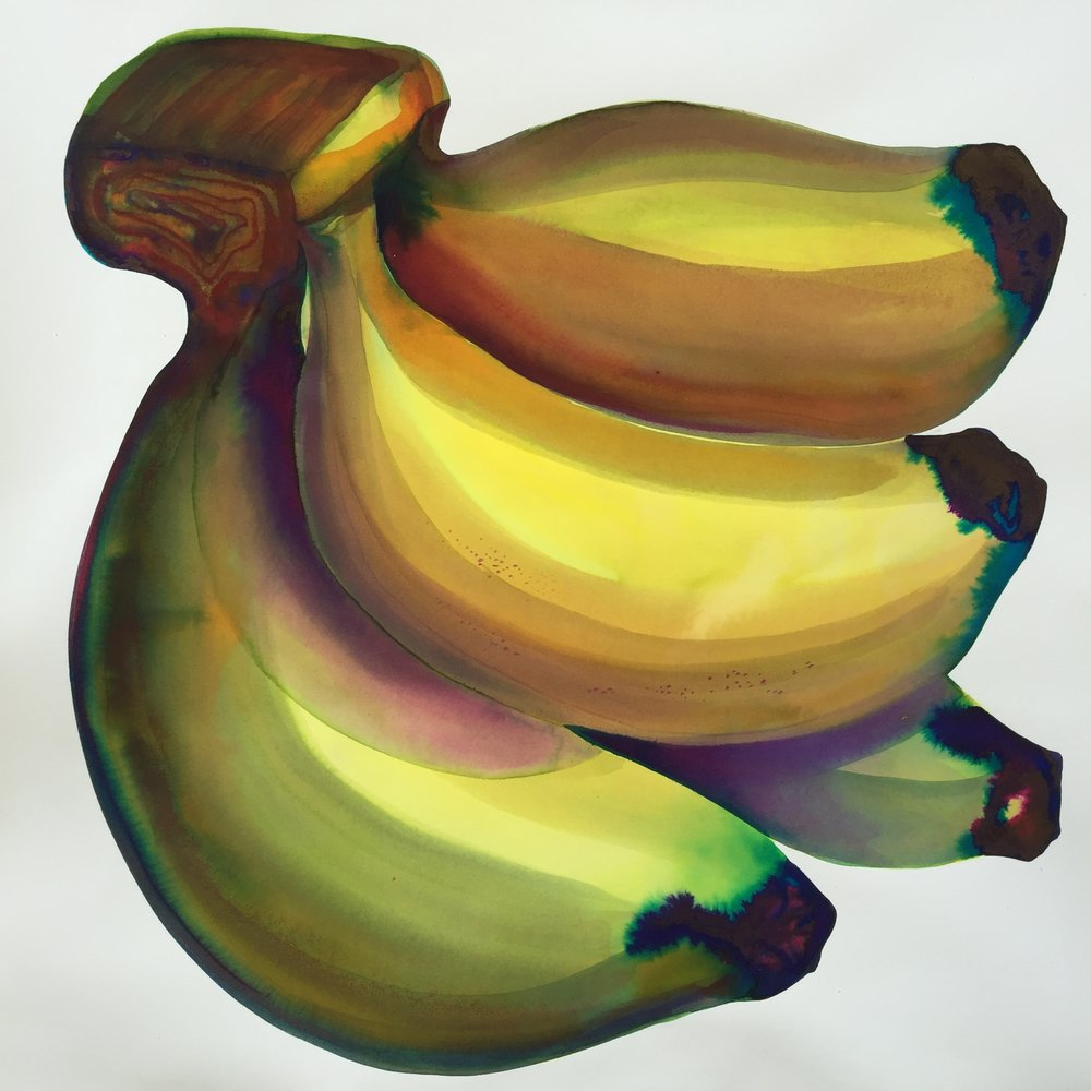 "banana, 2018, 19"" x 19"" watercolor on arches SOLD"