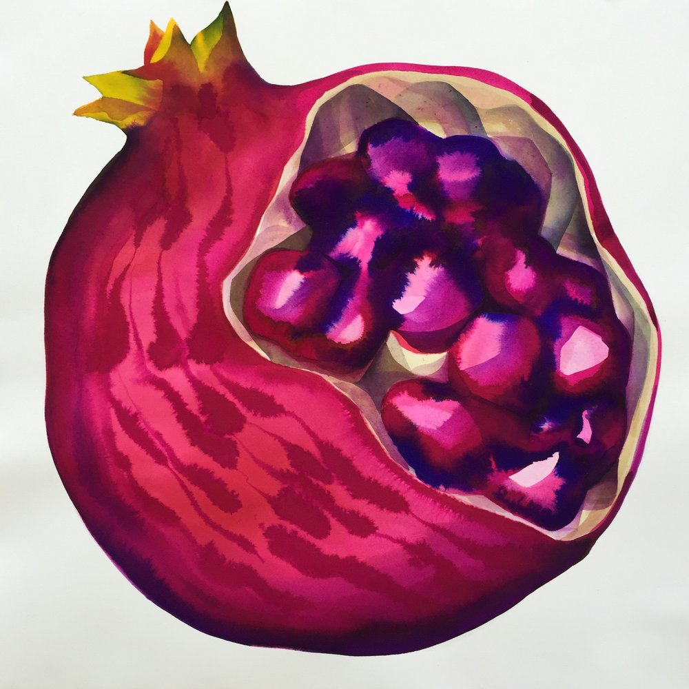 "pomegranate, 2018, 19"" x 19"" watercolor on arches SOLD"
