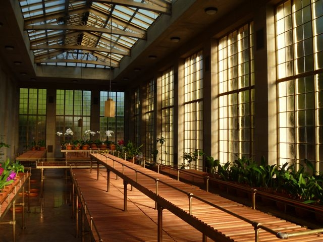 Conservatory Interior.jpg