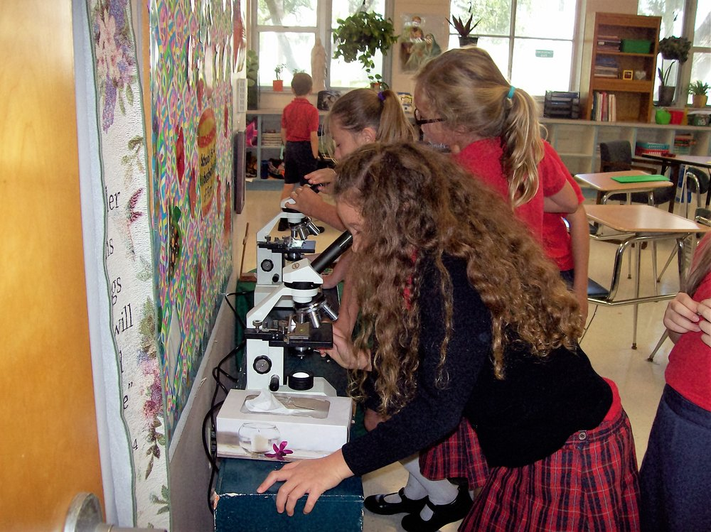 Science is an important part of our educational belief system