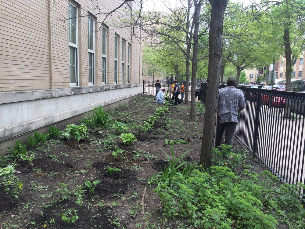 Swift Elementary Gardening Project