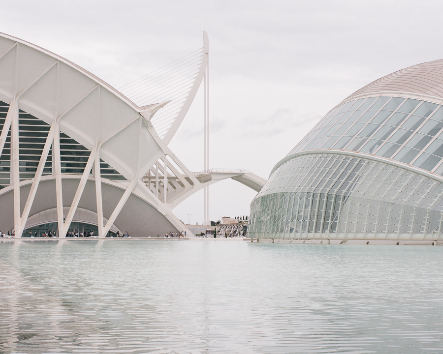 Ciudad de las Artes y las Ciencias (City of Arts and Sciences)
