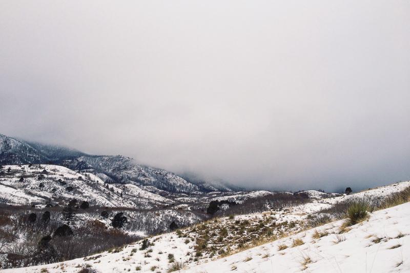 Colorado Springs (Colorado)
