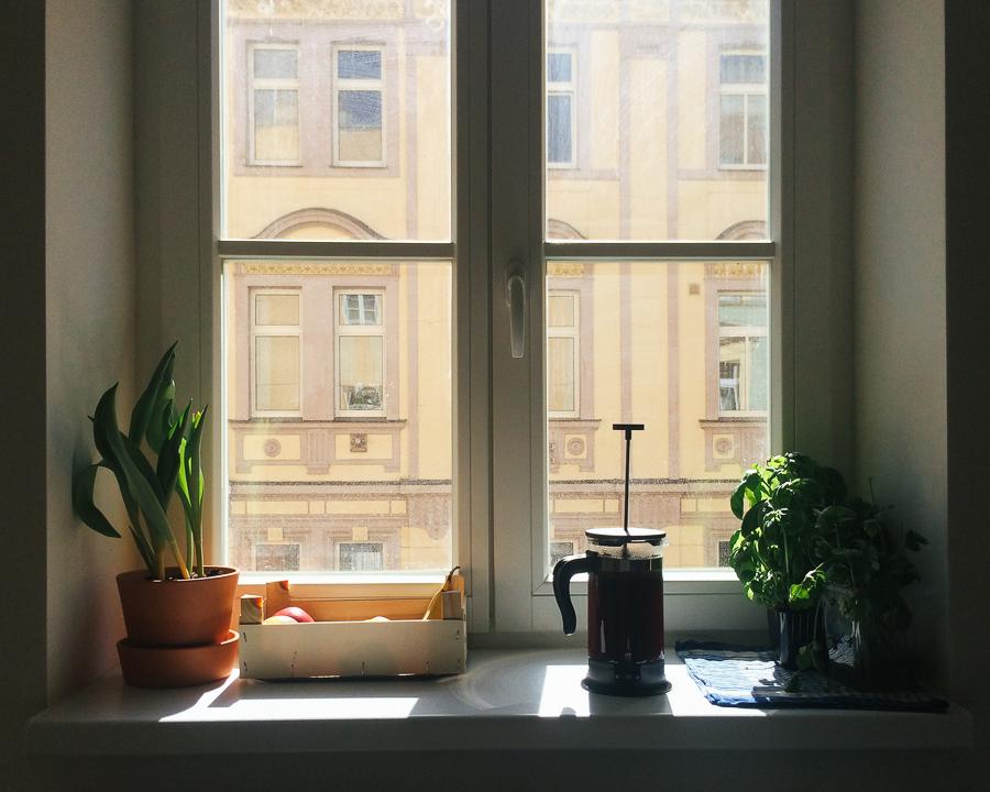 Our kitchen window