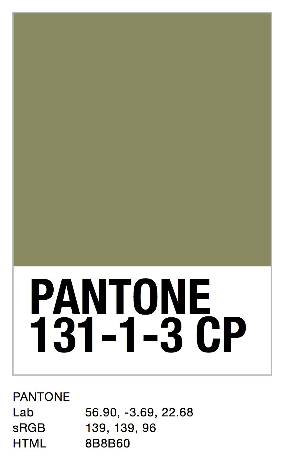 PANTONE 131-1-3 CP.jpg