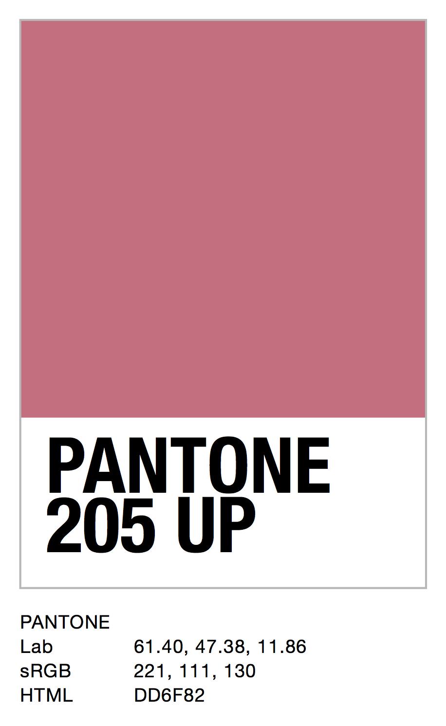 PANTONE 205 UP.jpg