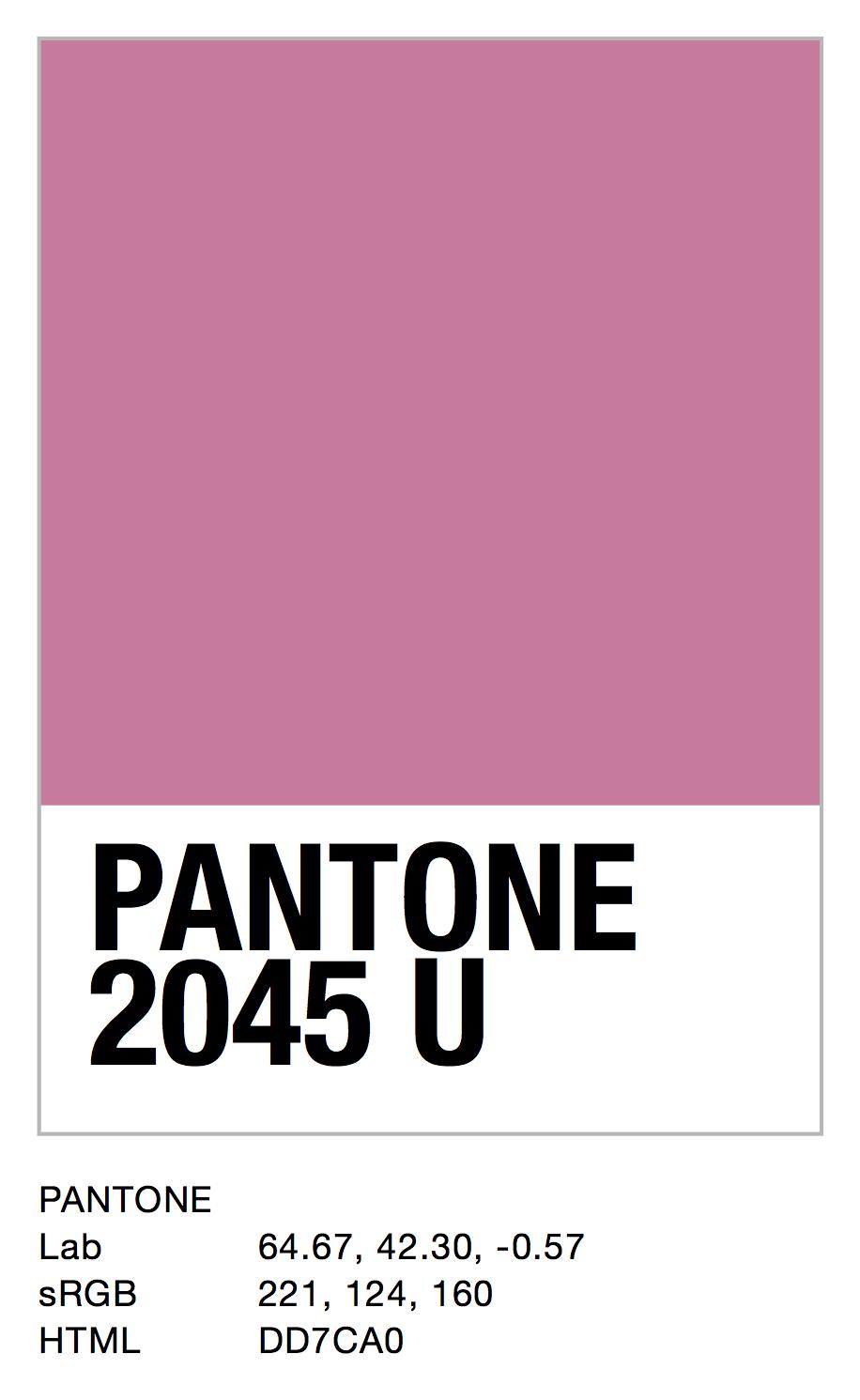 PANTONE 2045 U.jpg