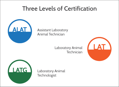 certification-levels.png