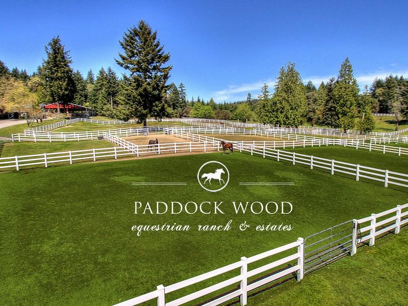 Paddock Wood.jpg