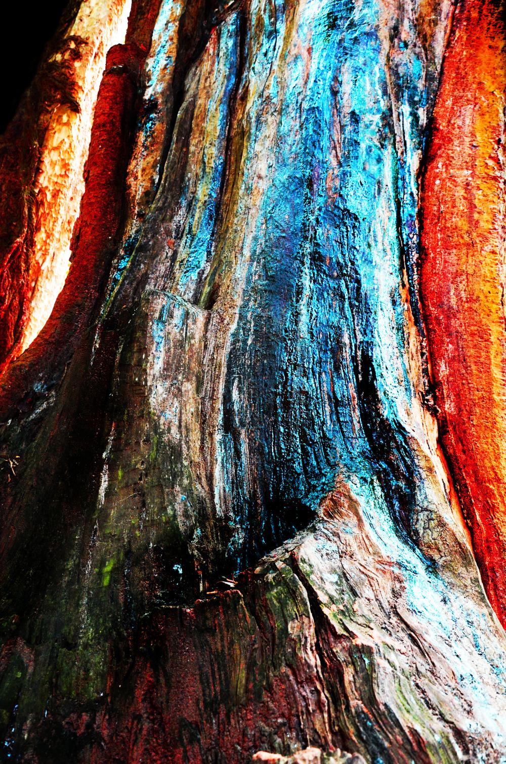 #oilstonetree