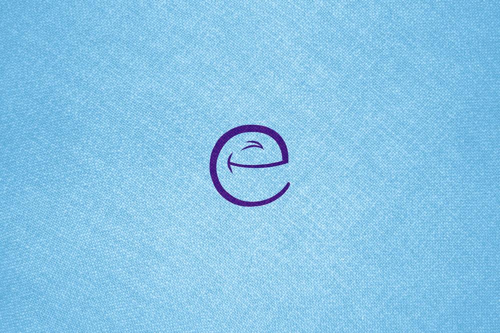 E1-pt1.jpg