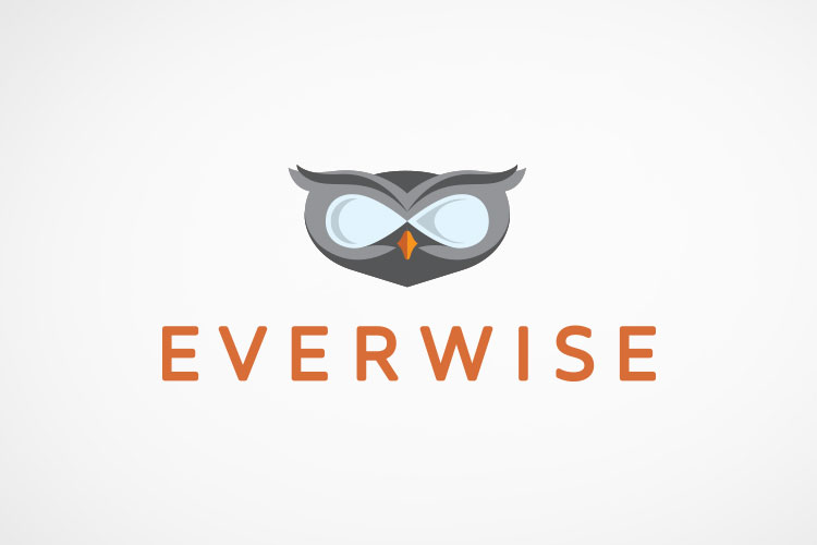 Brand identity for Everwise, a professional mentorship resource
