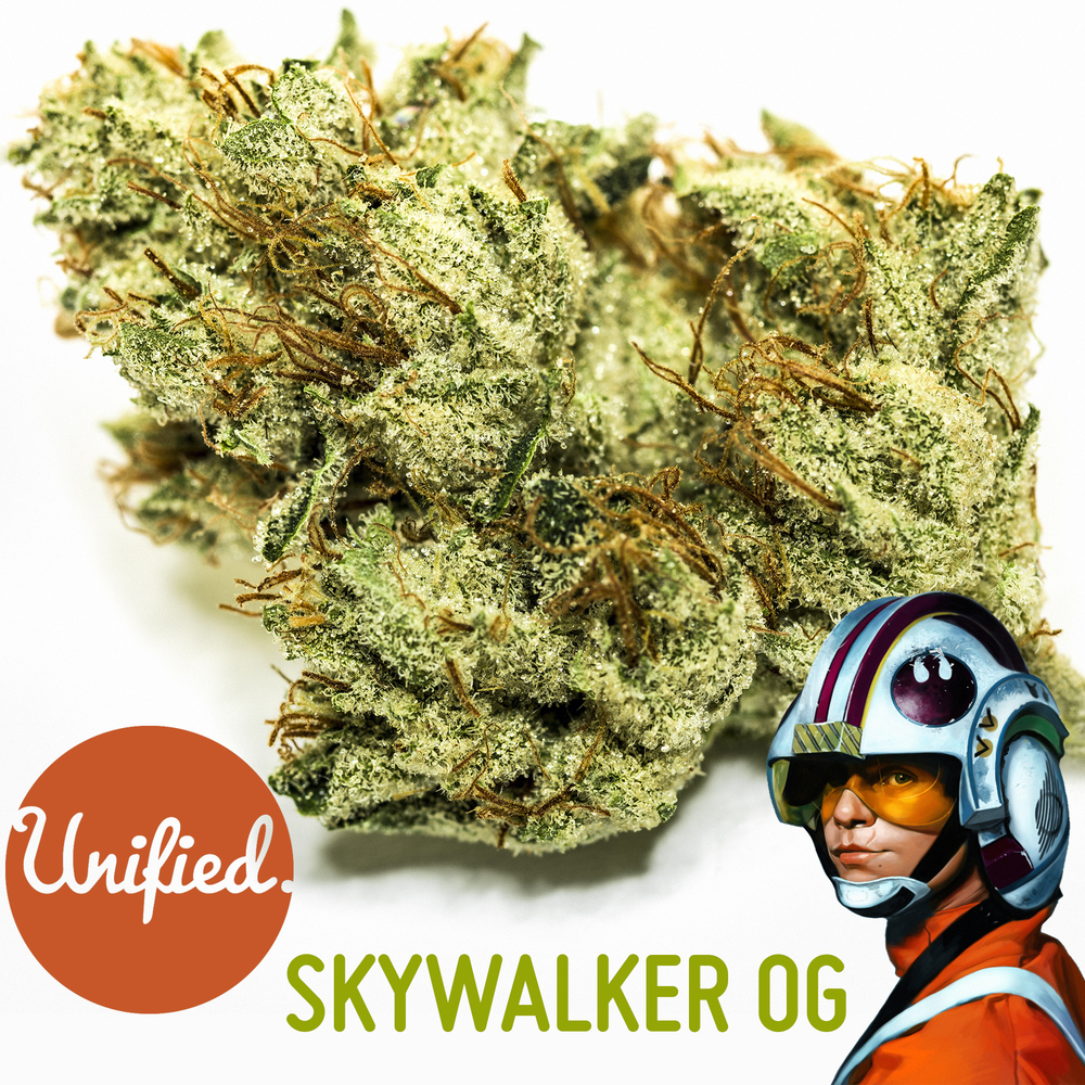 SKYWALKER OG SQUARE.jpg