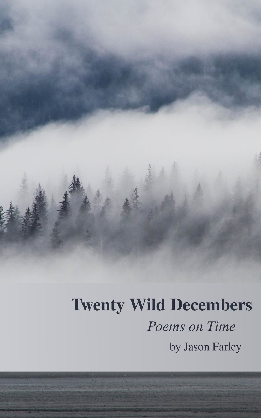 Twenty Wild Decembers JPG Final Cover.jpg