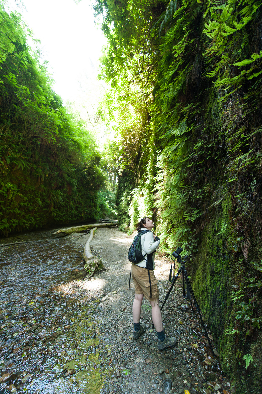 Valerie in Fern Canyon, Prairie Creek Redwood State Park
