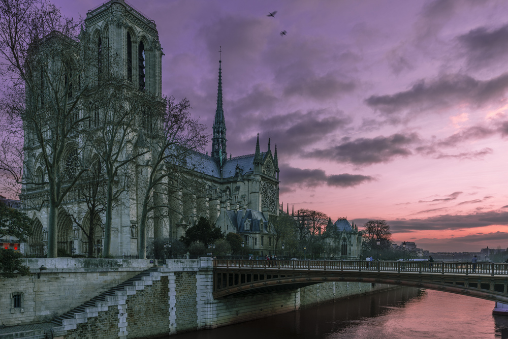 Notre Dame from the left bank, December 2014