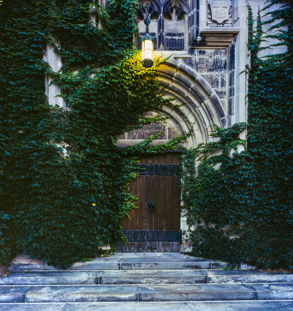 Ivy overtakes the east entrance, Rockefeller Chapel July 2015