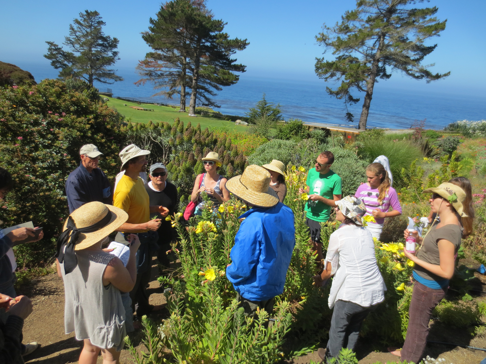 Husband, Darren Huckle L.Ac., teaches at  Esalen Institute,  Big Sur, California.