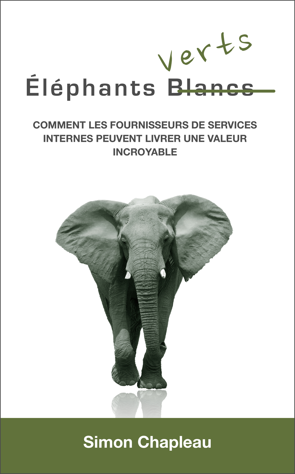 Green Elephant book cover french kindle.jpg