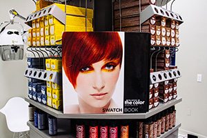 INDE - Salon Shots_0001_Layer Comp 2.jpg