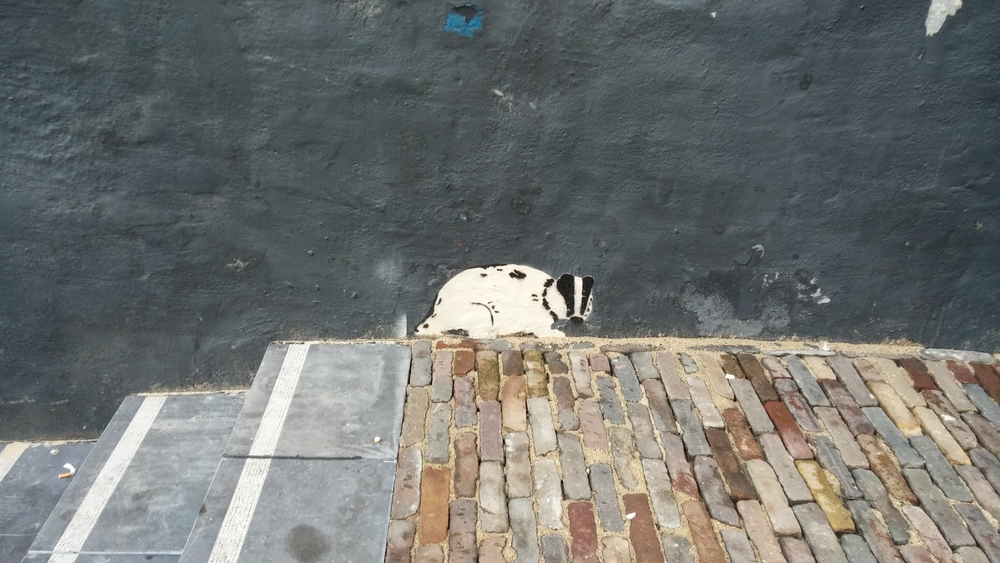 A skunk painted on a wall by the church.