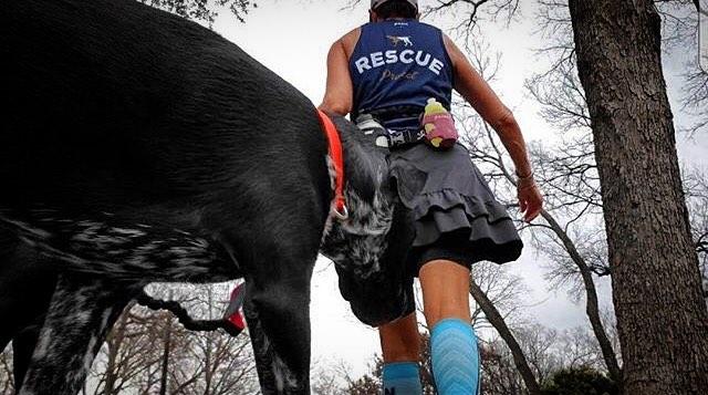 Always Rescue. #rescueproject #packleader #dogismyrunningcoach | @canerossorescue @mydoodlesluv2run