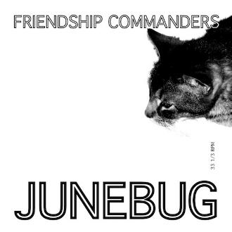 JUNEBUG Front Cover Art_2.jpg