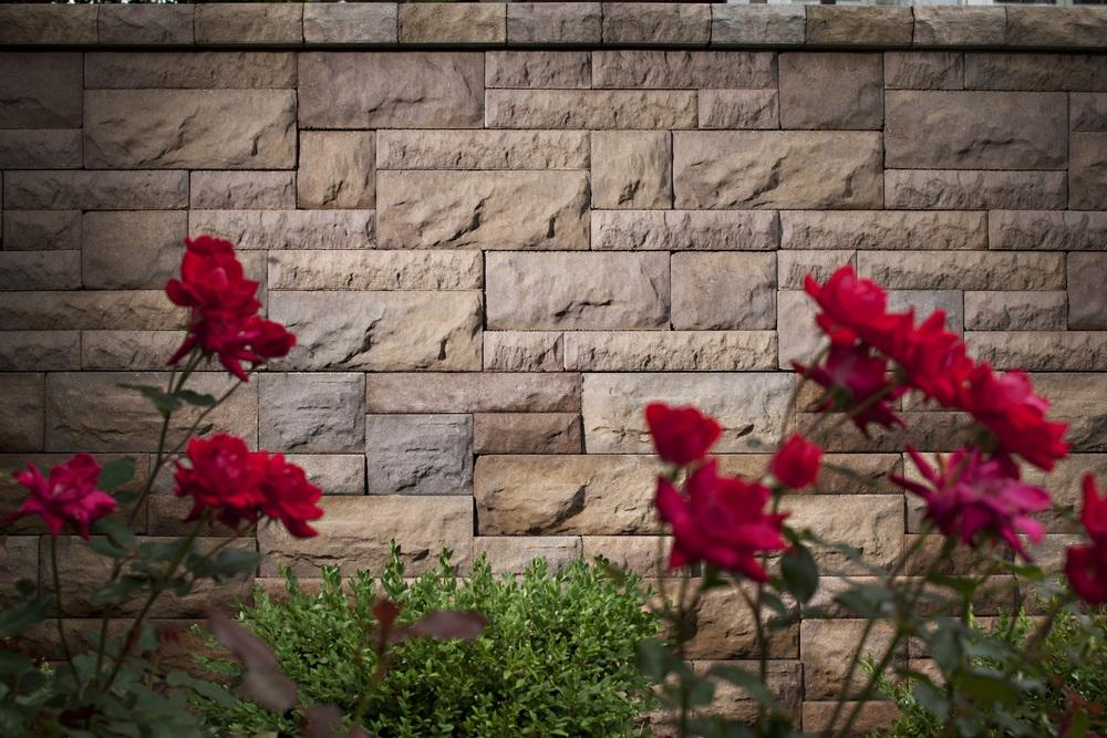BelAir Wall
