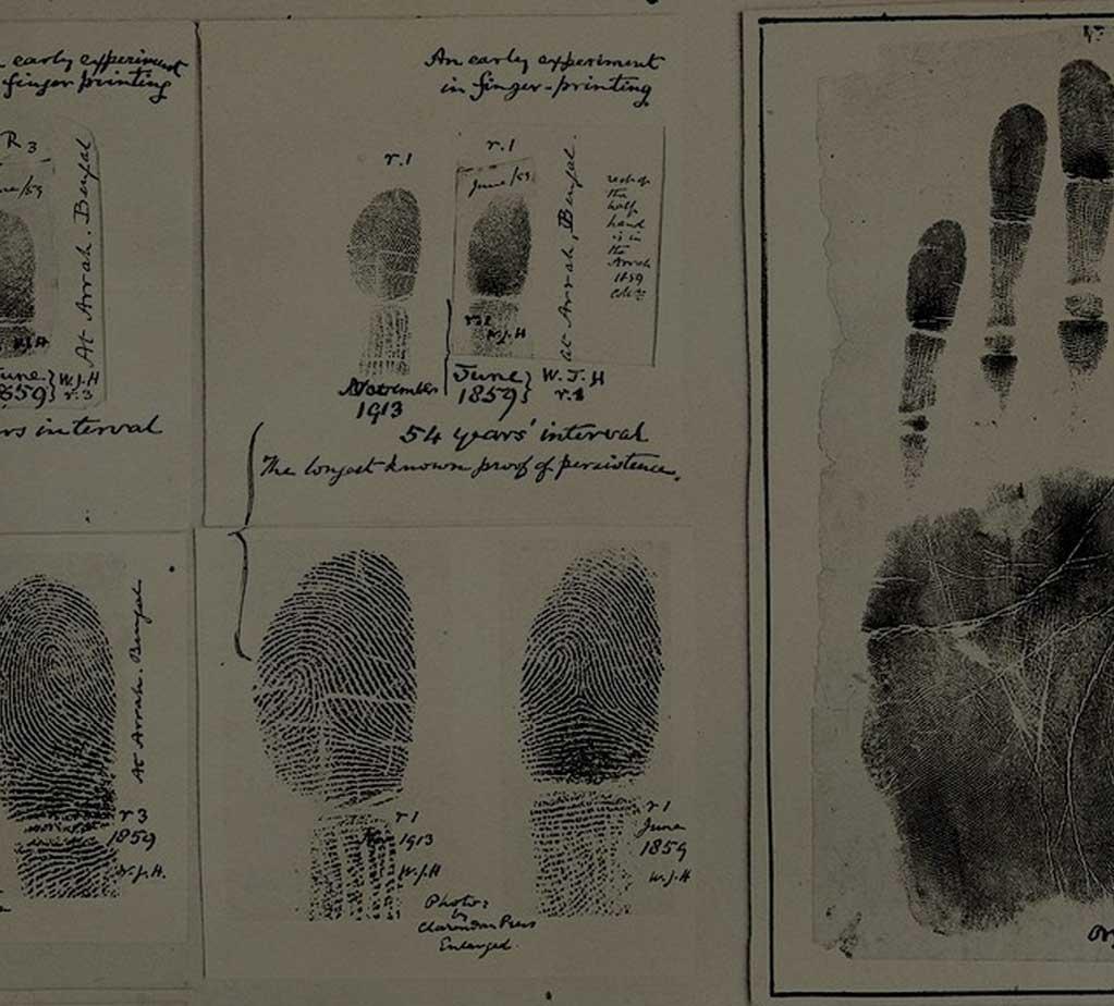 Livescan fingerprinting loris mobile notary falaconquin