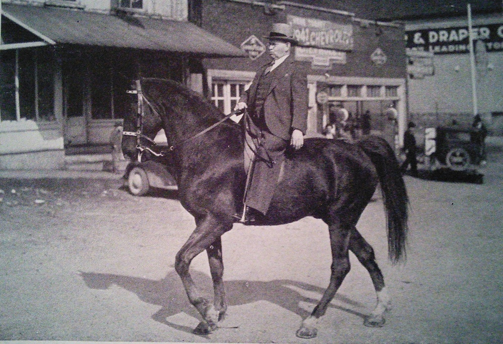 """Prince Cumberland"" Owned by J. Mack Draper Ridden by Dr. Willis Baxter Boyd"