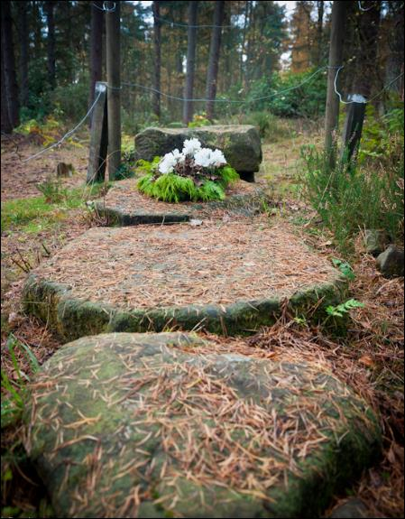 Plaque Graves near Culross Scotland