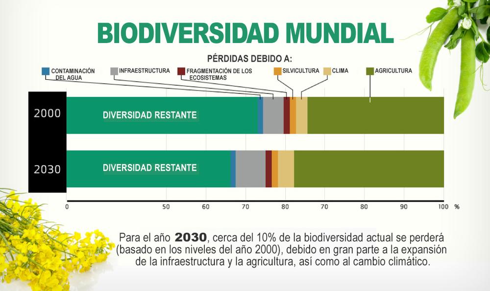 Agricultura-3(final).jpg