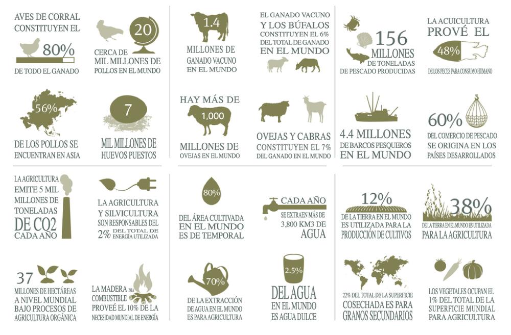 Agricultura-17(final).jpg