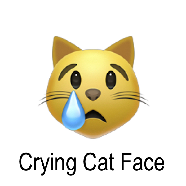 crying_cat_face_emoji.jpg