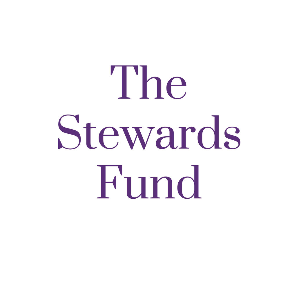 The-Stewards-Fund.jpg