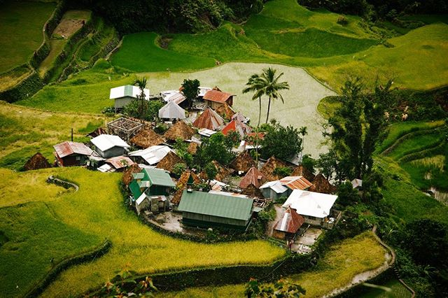 A village amidst the rice terraces of the Philippine Cordillera. A living cultural landscape that could be traced as far back as 2000 years, before Spanish colonization. 🇵🇭 #itsmorefuninthephilippines #philippines #culture #unesco #beauty #streetphotography #travel #instatravel #travelgram #wanderlust #picoftheday #shotonmoment #makemoments #travelstoke #landscape #wow #awesome #asian #passionpassport #roadtrip #adventure #natgeo #photooftheday #travelphotography #travelling #traveltheworld #vsco #hypebeast #trip #iphone