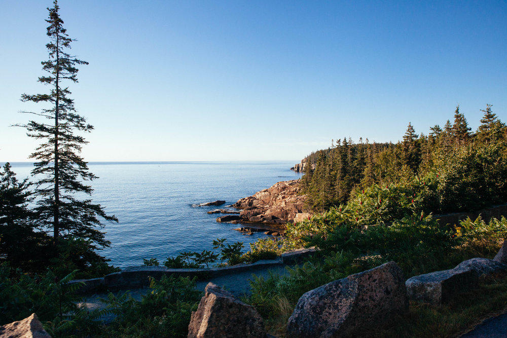 Acadia National Park is a great to visit because it is so accessible. The loop drive winds around Mount Desert Island, making every place you stop scenic and beautiful.