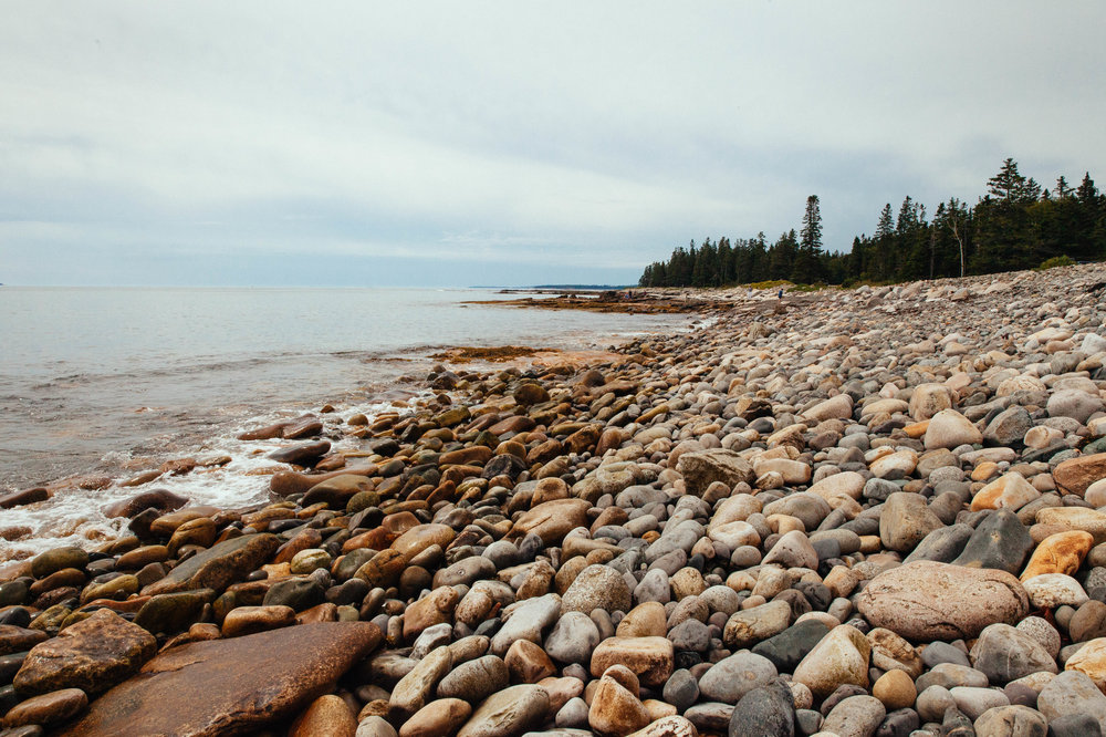 One of the stopping points on the loop, Seawall, is a naturally occurring rock seawall.