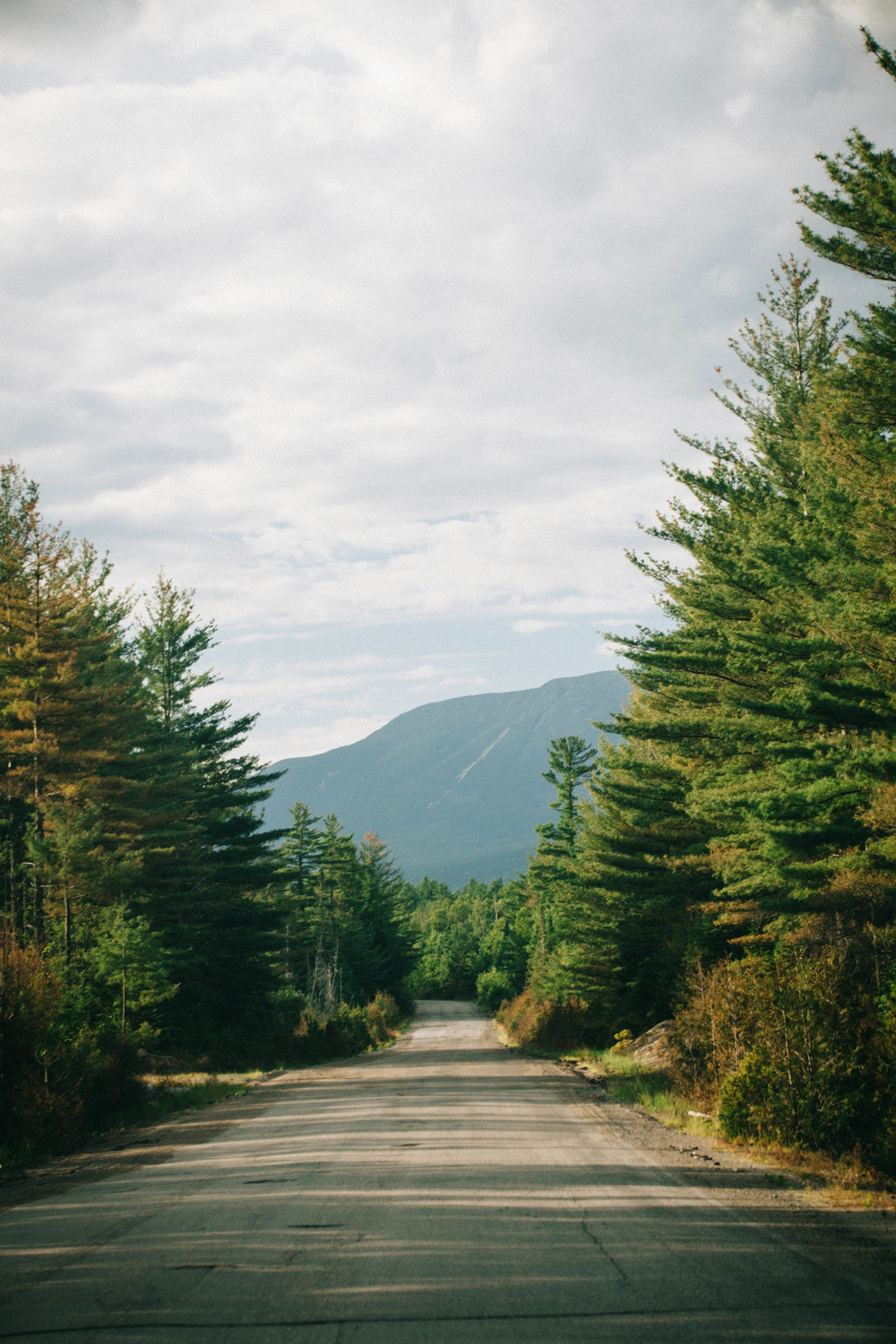 "The ""Golden Road"" in northern Maine where moose and wildlife sightings are frequent."
