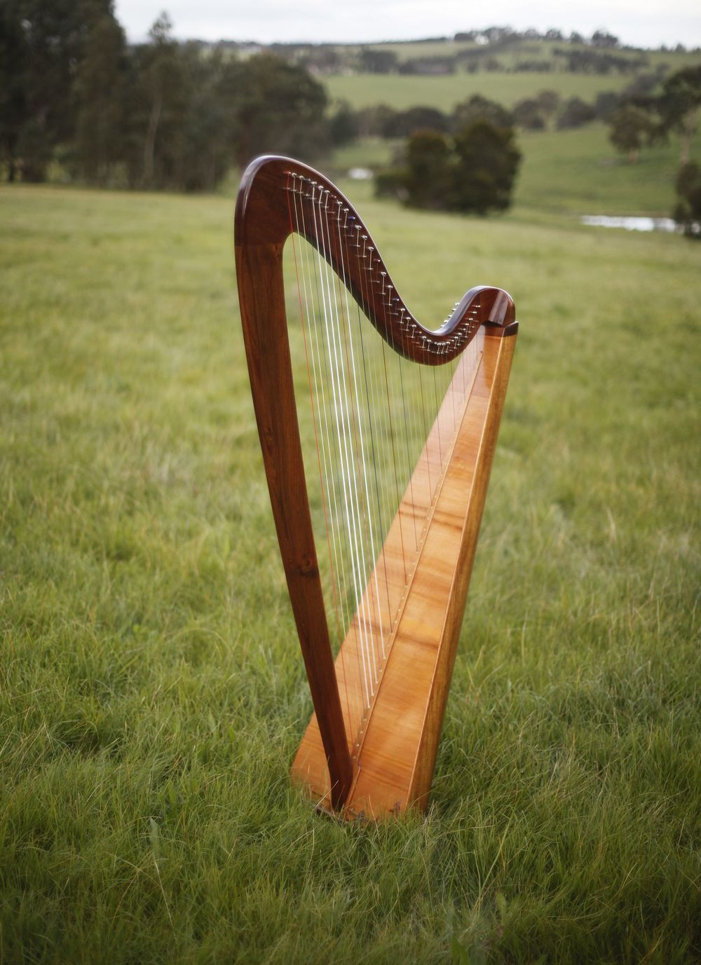 Andrew Jack harps.jpg
