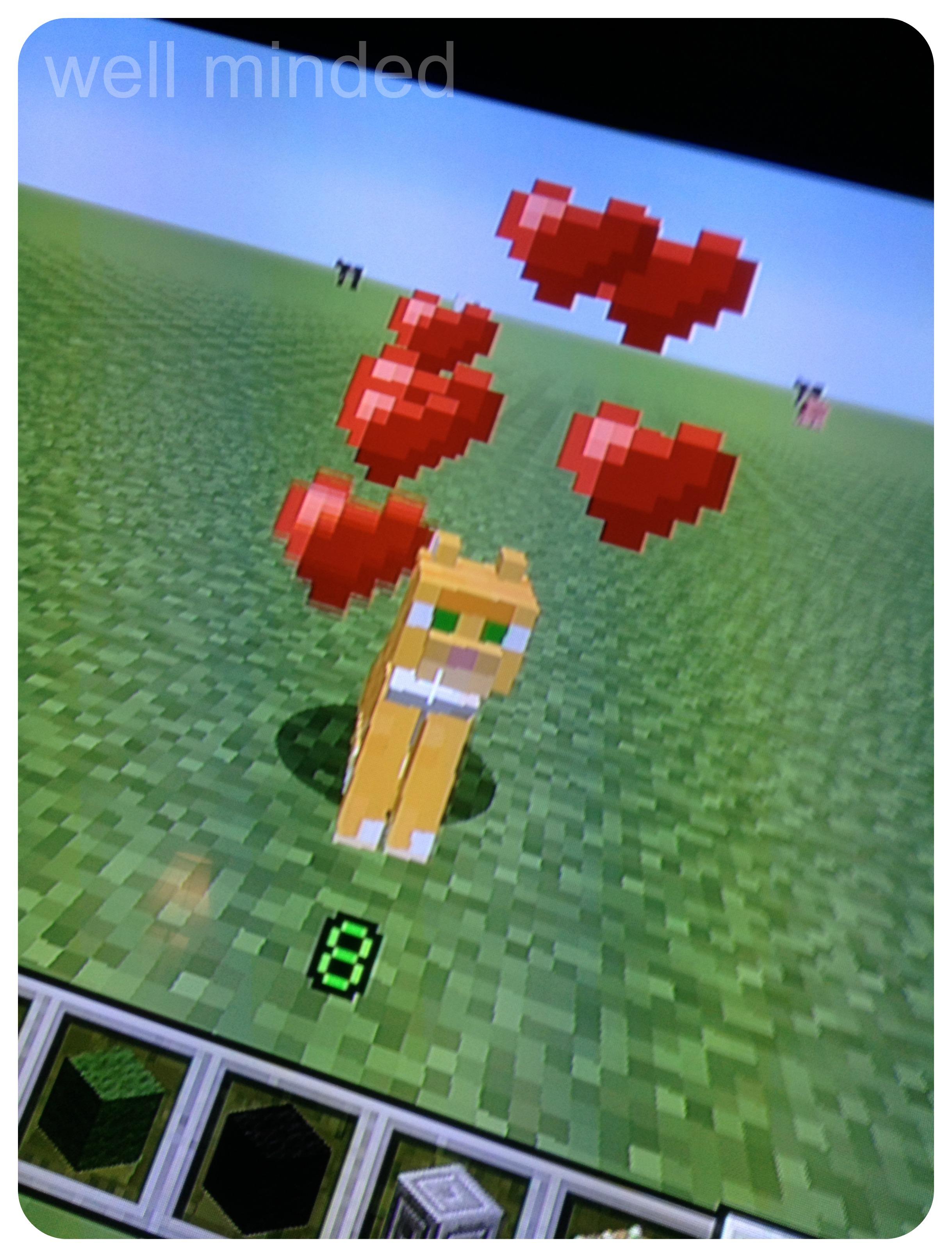 MinecraftOrangeCat