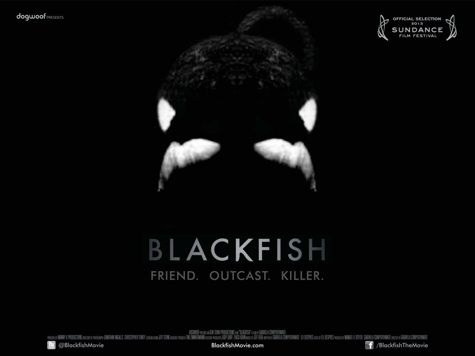 photo source: blackfishmovie.com