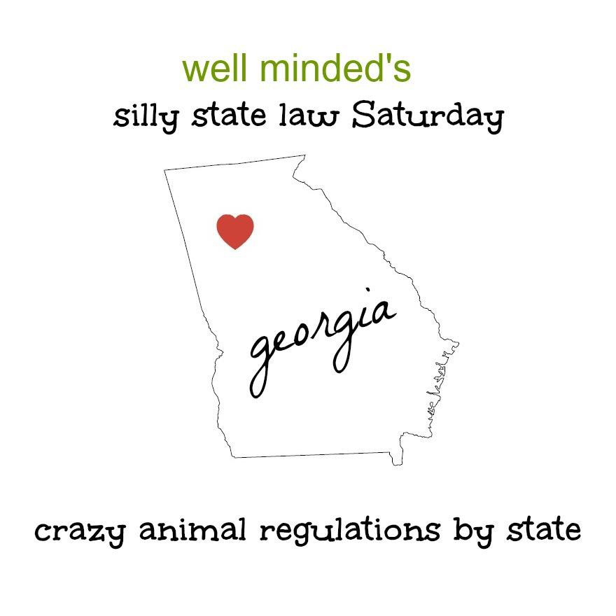state image source: poshgirlandtheonesheloves.blogspot