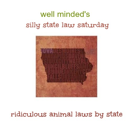 state image source: zazzle.com