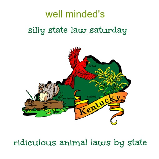 state image source: barbsnow.net