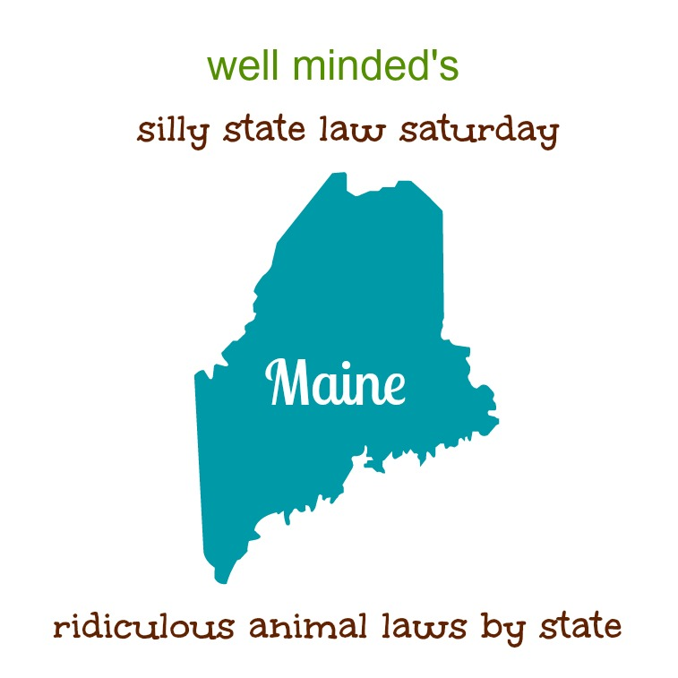 state image source: molinahealthcare.com