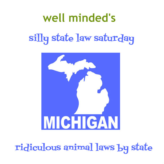 michigan dating laws 2014 The distinguishing aspect of the age of consent laws is that the person below the minimum age is regarded as the victim and his or her sex partner is regarded as.