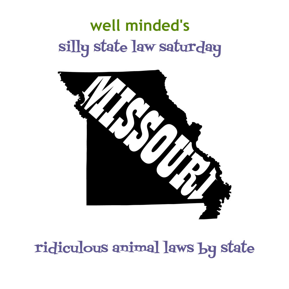 well minded's silly state law saturday: missouri. state image source: eyecandydecals.com
