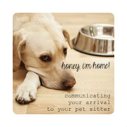 honey, i'm home: communicating your arrival to your pet sitter. dog image source: foodsafetynews.com
